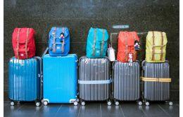 Какое количество чемоданов можно брать в самолет